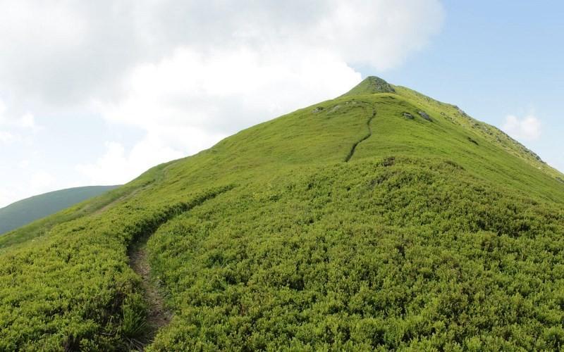 Гора Боржава